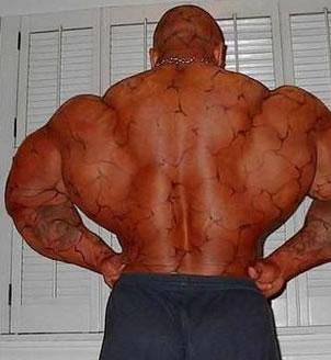 Kosthold plan bygge muskler